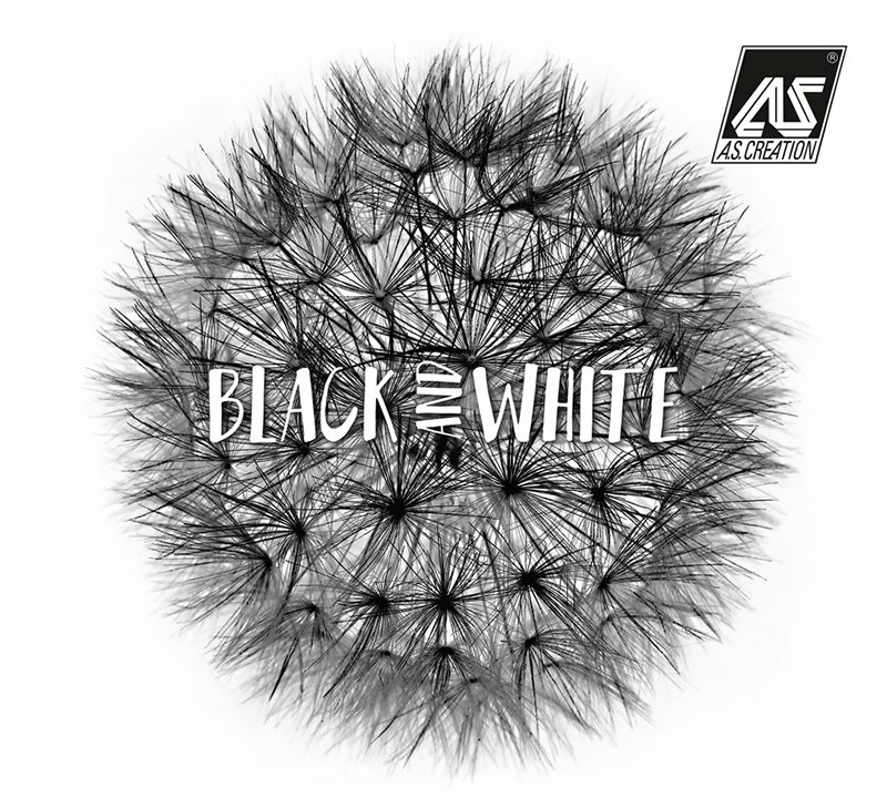 Tapety na zeď z katalogu Black and White 3