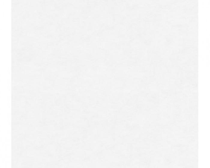 95329-1 Přetíratelné tapety na zeď Meistervlies 2020 - Vliesová tapeta Tapety AS Création - Meistervlies 2020