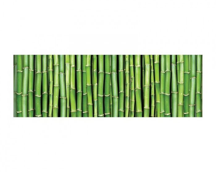 M 140 Vliesové fototapety na zeď Bambus  330 x 110 cm  popis  dimex tapety cz
